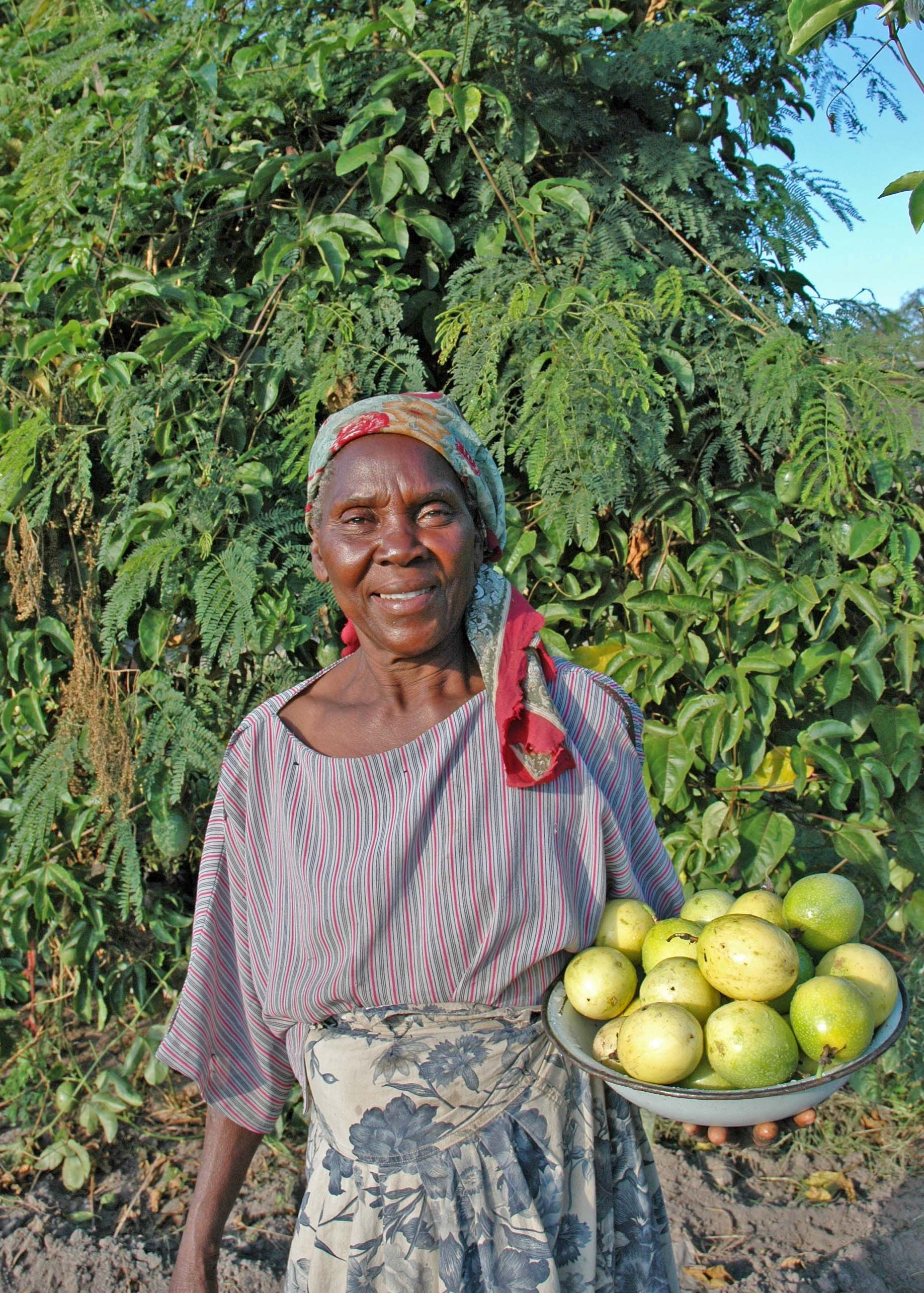 Esther_Gama_with_granadilla_on_plate_at_nutritional_garden_2_Chiweshe_Zimbabwe_March_2005