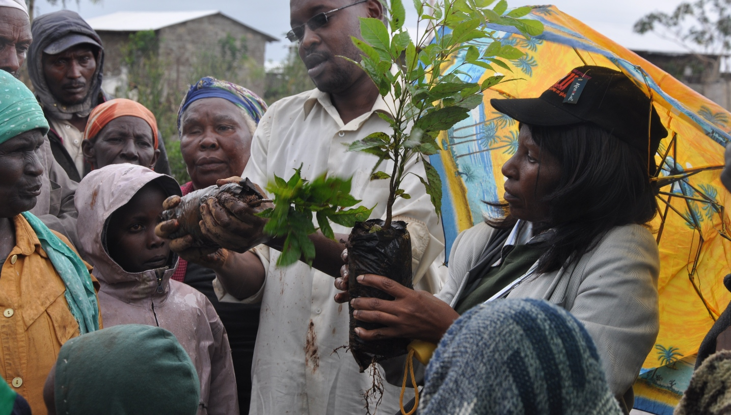 Centre staff Anne Mbora and Moses Munjuga show how to plant tree seedlings