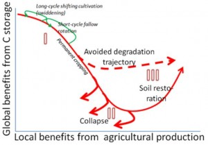 Soil-carbon transition curve