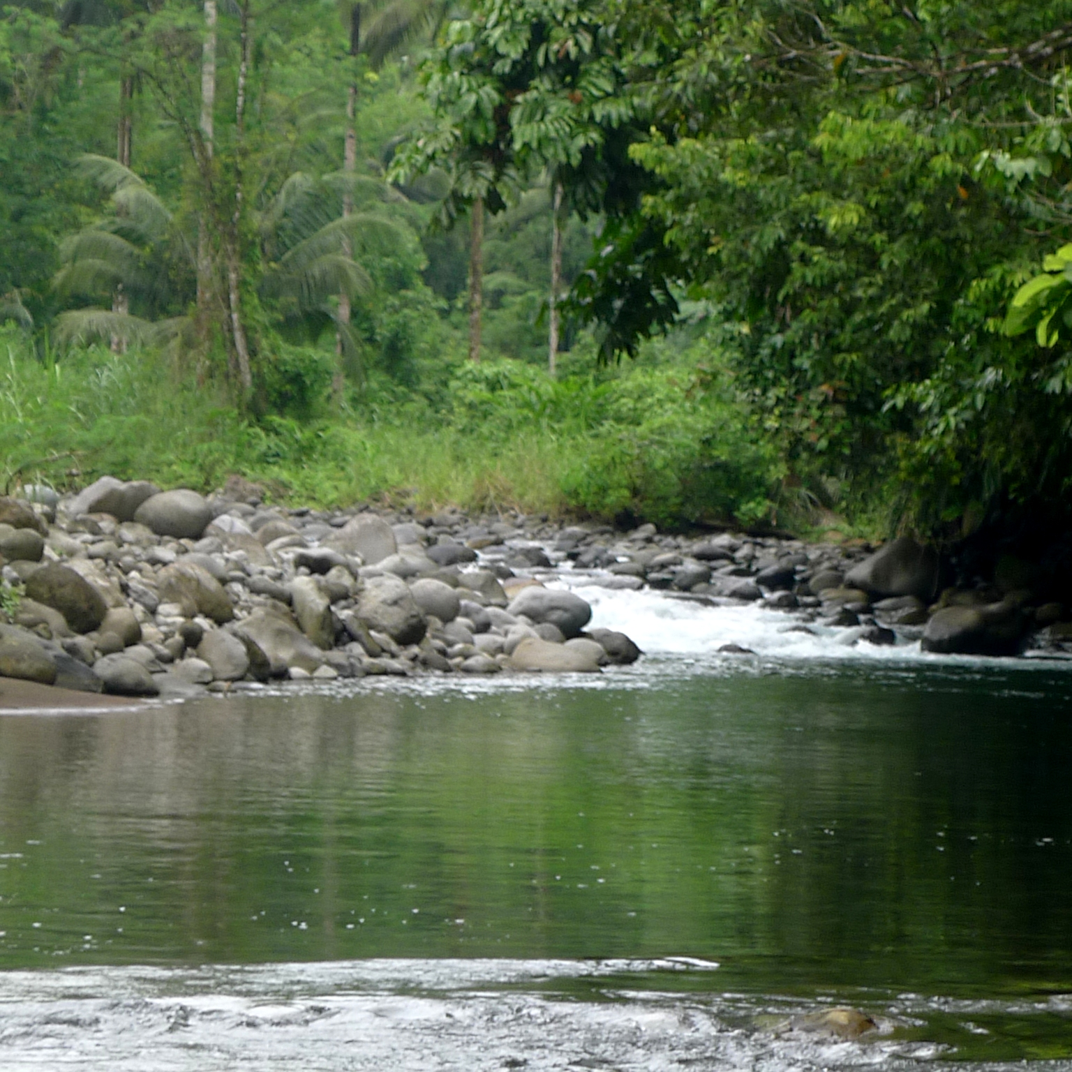 Layawan River, the Philippines, environmental, ecosystem, services