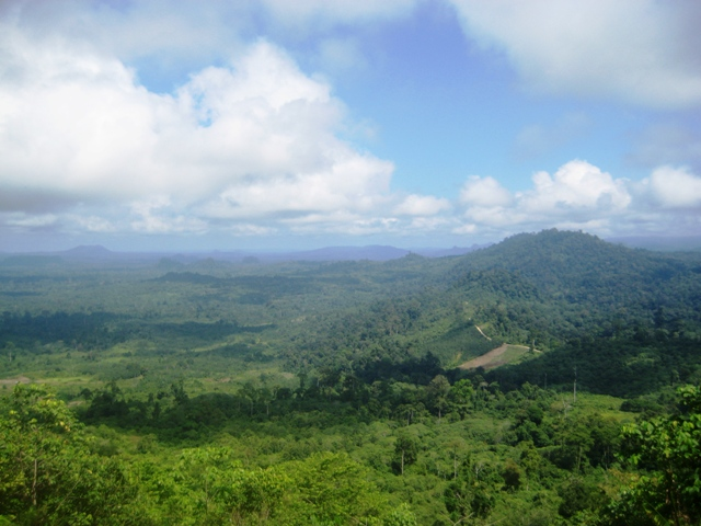 Uplands of Kutai Barat, East Kalimantan, Indonesia