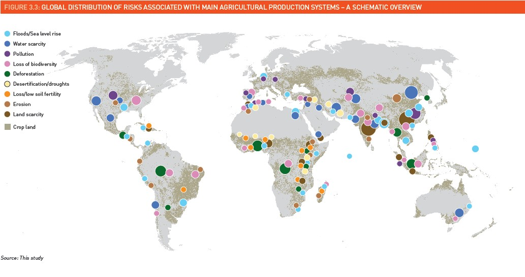Food systems at risk. Image courtesy of FAO