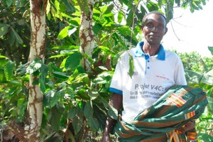 Mr Kouame Koume is involved in cocoa trials at Petit Bondoukou village, as part of the Vision for Change project. Photo: Claude Adjehi/ICRAF