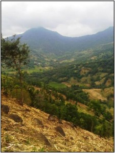 Landscape in South Sulawesi, Agroforestry and Forestry in Sulawesi (AgFor) project
