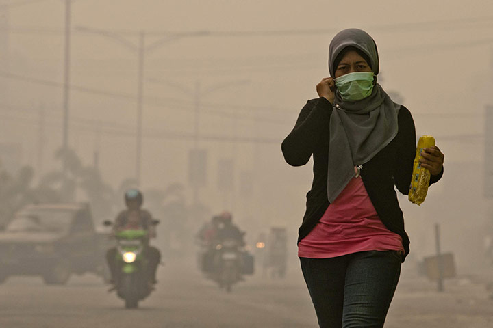Forest Fires Cause Smog in Dumai City Riau Province