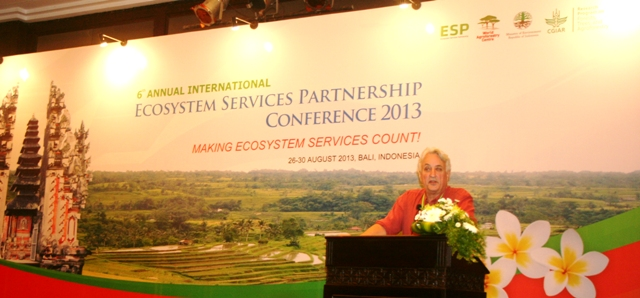 Robert Costanza presents at ESP conference