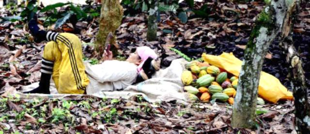 Woman resting with fruit