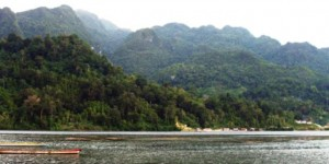 Tanimbar, forested landscape, Indonesia, tropical forest, management, ecological priorities