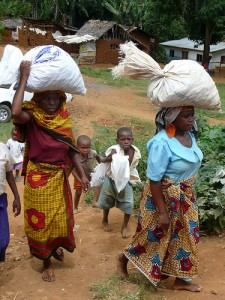 Delivering Allanblackia seeds to a collection centre in Tanzania. Photo by Charlie Pye-Smith