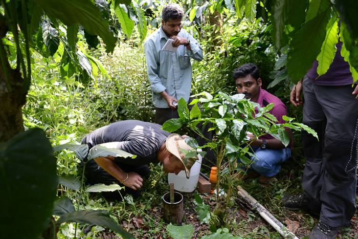 ICRAF scientist Tor-Gunnar Vågen (Left) and collaborators take readings in the Western Ghats, India, to be used for mapping
