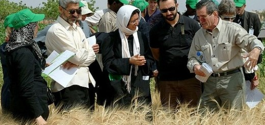 Farmers and scientists sharing knowledge. Photo: ICARDA.