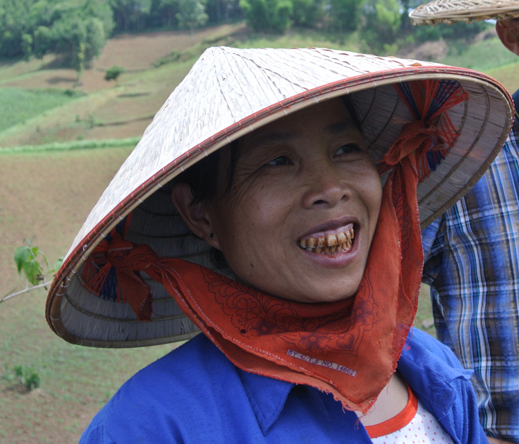 viet nam celebrates agroforestry but there is more to do
