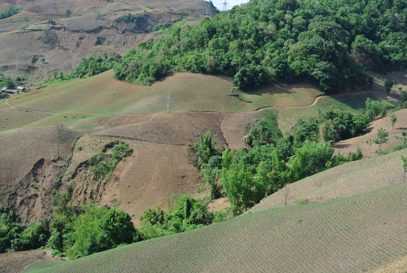 """Intensive maize cultivation on the steep slopes on Son La has been an effective poverty alleviation strategy but led to dramatic erosion. Forest is reduced to a ribbon along mountain tops."