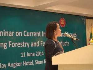 ASEAN, agroforestry, forestry, social forestry, ASOF, Delia Catacutan, World Agroforestry Centre