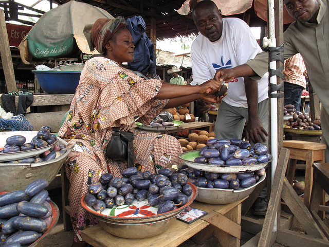 African plum (Dacryodes edulis) for sale in a village market in Cameroon. The plum is one of the trees domesticated through the ICRAF project. Photo by Charlie Pye-Smith/ICRAF