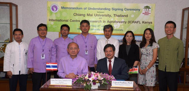 Chiang Mai, ICRAF, World Agroforestry Centre, University