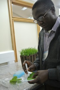 Dr Daniel Adewale at the African Plant Breeding Academy. Photo by Cathy Watson