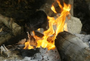 Wood was humankind's main source of energy from the discovery of fire until industrial times. A clean-burning log fire. Photo courtesy of Prof Tony Cunningham