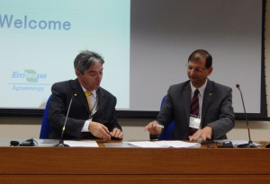 Manoel Teixeira de Souza, head of agroenergy with the Brazilian Agricultural Research Corporation (Embrapa) (left) and Ravi Prabhu, ICRAF deputy director general for research, sign the cooperation agreement between Embrapa and ICRAF, on 19 August 2014