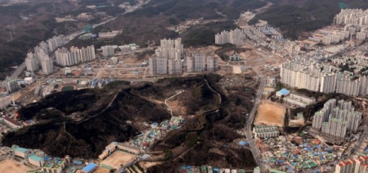 Restored forests around the city of Pohang in North Gyeongsang Province, Republic of Korea. Photo: Korea Forest Service.