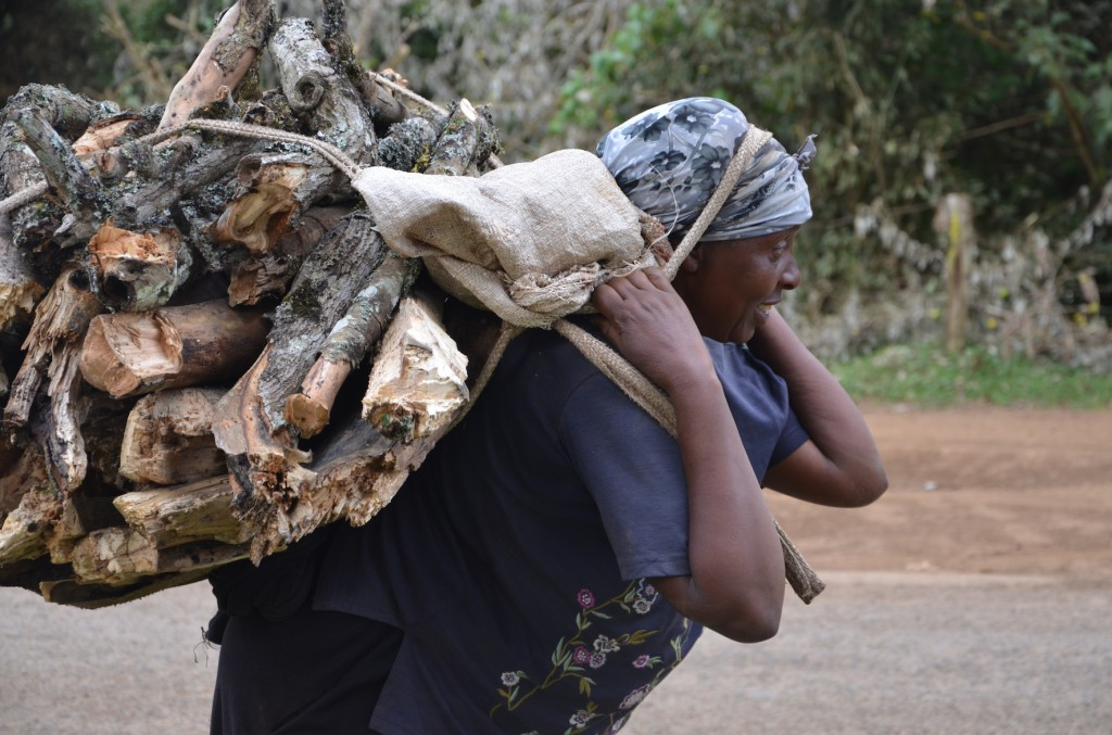 Woman carrying firewood in Kereita village, Kenya. Photo by ICRAF/Tabitha Obara
