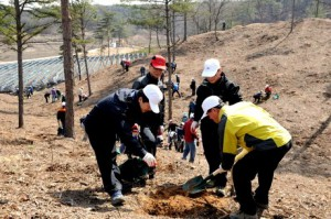 Tree planting in Gyeonggi Province. Photo: Korea Forest Service.
