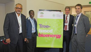 Mary Njenga (2nd Right), Navin Sharma, Philip Dobie and Oliver Frith, the four speakers at the Bioenergy Forum, CBD COP12. Photo by ICRAF/Daisy Ouya