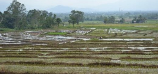 landscape, Lantapan, Bukidnon, Philippines, World Agroforestry Centre, Robert Coombs