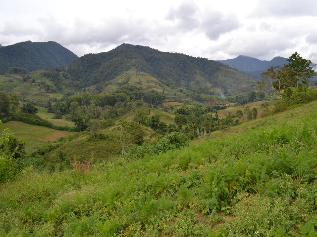 Mount Kitanglad Range Natural Park, B+WISER, Amy Cruz, World Agroforestry Centre