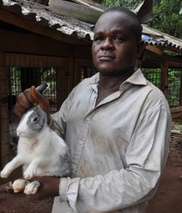 Rabbits provide food and an alternative income source for rubber farmers/ Photo by Julius Atia/ICRAF
