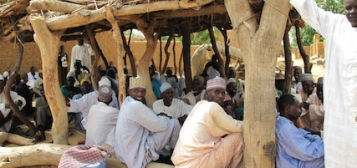 Participatory community meeting, Niger. Photo credit: Mahamane Larwanou  Climate Smart Landscapes: Multifunctionality in Practice