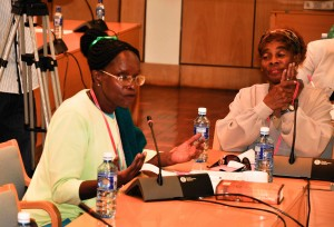 Green Belt Movement Board members Monica Opole (L) and Prof Vertistine Mbaya at the Women and Environment Forum, 4 March 2015. Photo by Daniel Odiambo/ICRAF