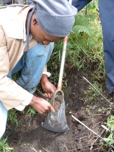 Collecting soil samples. Photo: ICRAF