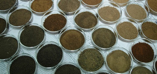Soil samples awaiting infrared scanning at the CGIAR's Soil-Plant Spectral Diagnostic Laboratory based at ICRAF. Photo by Keith Shepherd/ICRAF