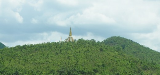 regrowth, sloping land, Myanmar