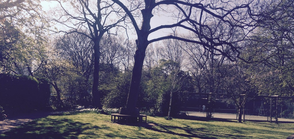 Caption  London has an estimated 7 million trees for a population of 8.6 million people.