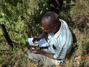 A research technician records the GPS coordinates of a sampling point within the study area of the MICCA project site in Kaptumo, Kenya. Photo: ICRAF