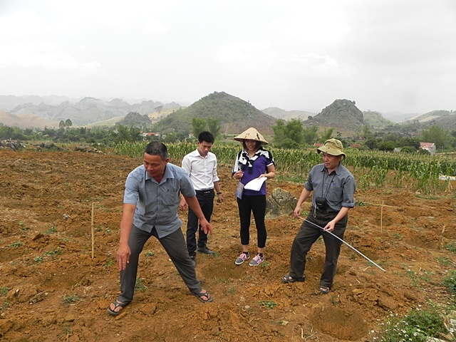 Mr Lo Van Xong, a Tai farmer in Doan Ket village, explaining his on-farm coffee and mango trial to Humidtropics researchers. Photo: World Agroforestry Centre/CGIAR Research Program on Integrated Systems for the Humid Tropics/Mai Thanh Tu