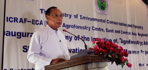HE U Win Tun, Union Minister of Environmental Conservation and Forestry opens the meeting