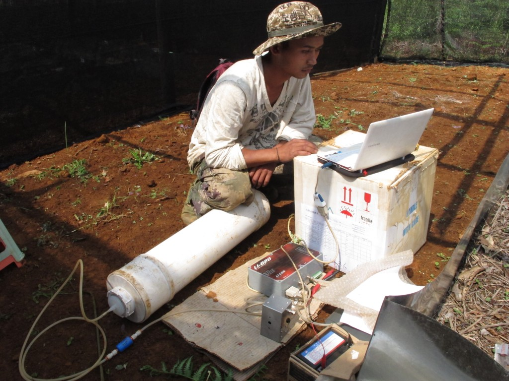 Xishuangbanna Tropical Botanical Garden researcher measuring CO2 production from a dead log