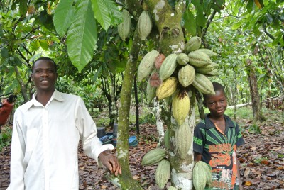 In Côte d'Ivoire, PES project protects river and restores biodiversity on cocoa land