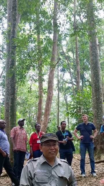 Dr Tatang Tiryana, the forest's Director of Education and Research, with visiting World Agroforestry Centre researchers. Photo: World Agroforestry Centre/Robert Finlayson