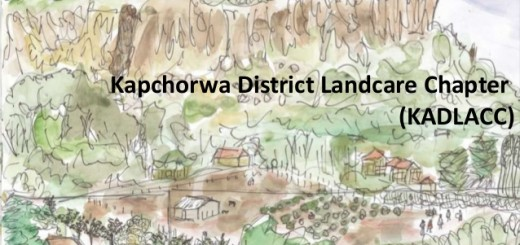 An artist's impression of a Kapchorwa landscape. Source: Kapchorwa District Landcare Chapter