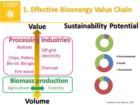 The bioenergy value scale and sustainability potential. Source: World Agroforestry Centre/Navin Sharma
