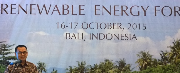 Bioenergy boosted through international agreement in Bali