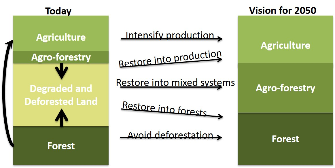 Today's land use and the vision for 2050. Source: World Agroforestry Centre/Garrity 2015