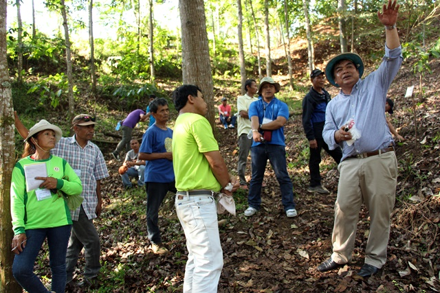 Farmers and agricultural technicians from Lantapan, southern Philippines listen to Dr Mercado explain the different agroforestry systems at the CAWT Center. Photo: World Agroforestry Centre/Kharmina Paola Anit-Evangelista