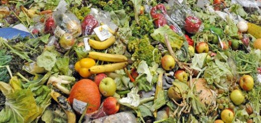 Food Waste. Photo courtesy of FAO/John Isaac
