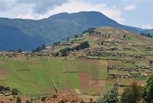 Cultivated landscape near Mount Tshiaberium, Lubero, North-Kivu.