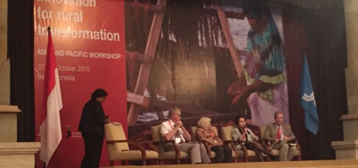 Dr Leimona (seated, with microphone) addressing the seminar. Photo: World Agroforestry Centre/Sacha Amaruzaman